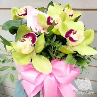 Букет из 5 орхидей
